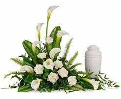 fiori miotto